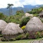 Dani Tribe House at Baliem Valley Tour